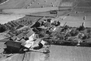 Frøyhov-gårdene i 1949, med Frøyhov gnr. 203/3 nærmest og Frøhaug gnr. 203/2 sønnenfor. Øverst til venstre skimter vi Hundstadveien. Foto: Widerøe's Flyveselskap AS